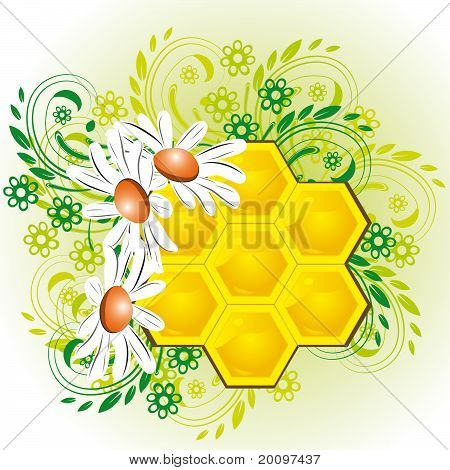 Honeycombs In Flowers