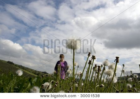 Woman Walking Through Wild Dandelions
