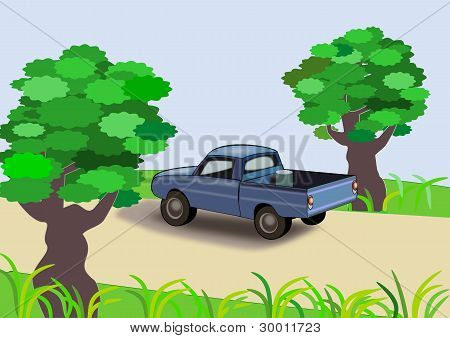 Trees and Car