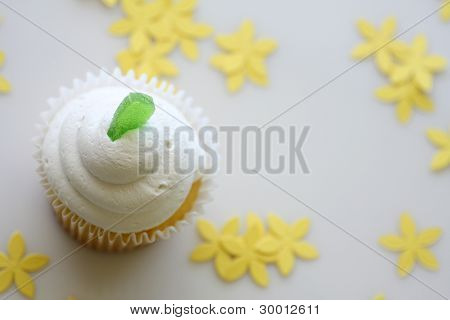 Lime Cupcake with Room for Text