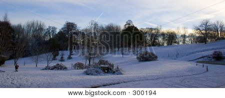 Snowy Xmas Garden