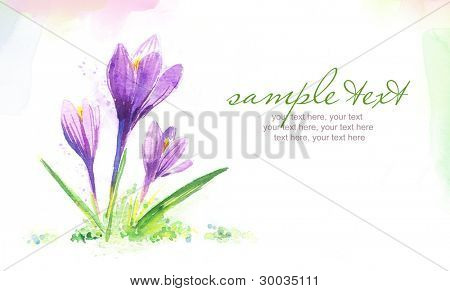 Painted watercolor card with crocus flowers and text