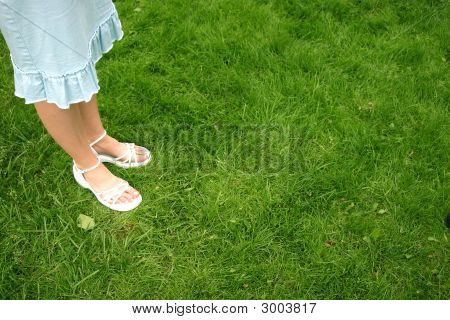 Woman Dress Grass