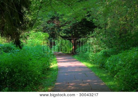 Green Path Way