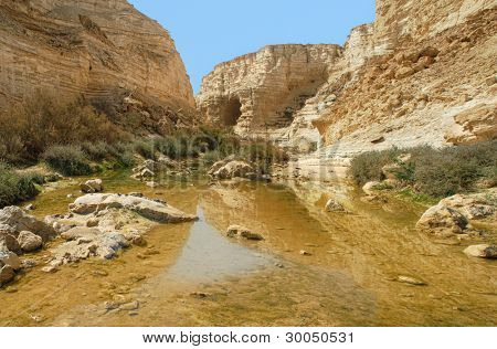 Horizontal oriented image of small pond among mountains at Ein Avdat Canyon in Negev desert, Israel.