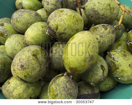 Horse Mango Fruits