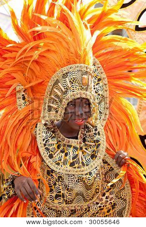 Beautiful Carnival Costume