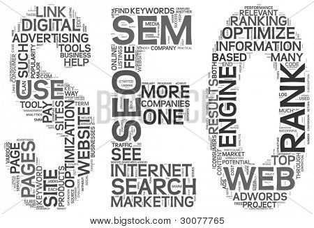 Search engine optimization concept in SEO shape as word tag cloud on white background