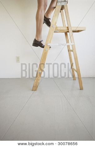 Low section of woman climbing ladder