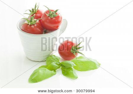 Petit tomato in the cup