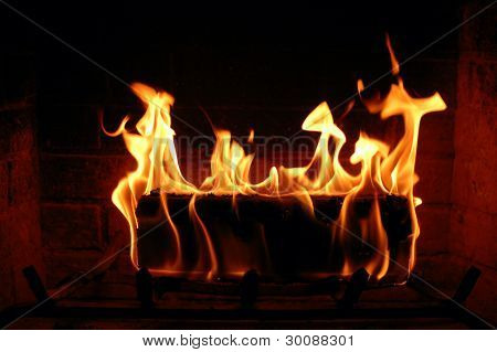 Burning Log In The Fireplace