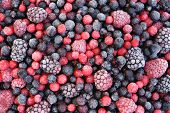 Close up of frozen mixed fruit - berries - red currant cranberry raspberry blackberry bilberry blueb