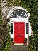 foto of front door  - A red georgian door on an ivy covered house - JPG