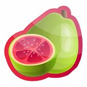 Whole Guava Logo. Cartoon Of Whole Guava Vector Logo For Web Design Isolated On White Background poster
