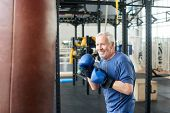 Handsome Senior Male Training With Punching Bag. Old Trainer Training With Punching Bag In Fitness S poster