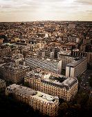 Paris Vernacular