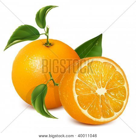 Fresh ripe oranges with leaves. Rasterized version of vector illustration  ID: 82043770