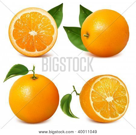 Set of fresh ripe oranges with leaves. Rasterized version of vector illustration  ID: 84096874