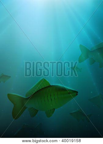 underwater vector scene