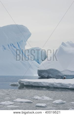 Icebergs In The Antarctic Waters Of Winter.