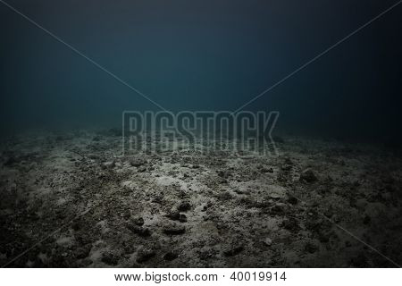 Underwater shoot of a dead sea bottom with remains of coral reef