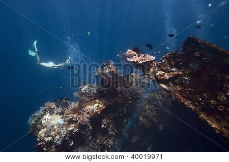 Underwater shoot of a young woman exploring USAT Liberty wreck on a breath hold. Tulamben, Bali island, Indonesia