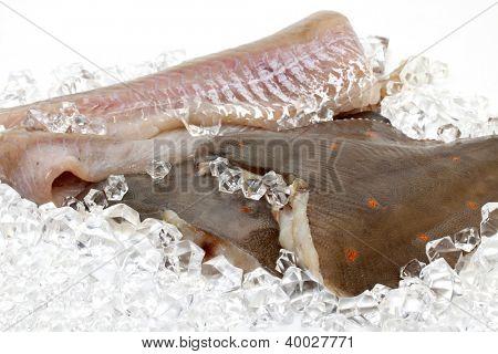 Fresh flounder on ice
