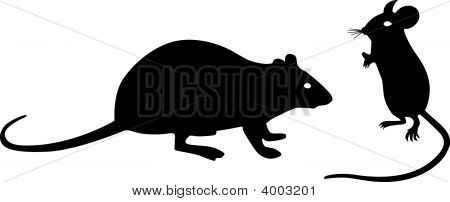 Black Mouse And Rat Silhouettes