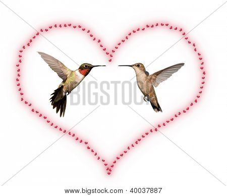 Two Hummingbirds inside a Valentine's Day heart; isolated on white