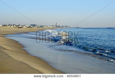 Sunny Shoreline