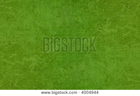 Very Large Mottled Organic Green Mossy Texture