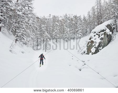 Backcountry skier walks in a snowy mountain valley. Gressoney, Val d'Aosta, Italy, Europe.