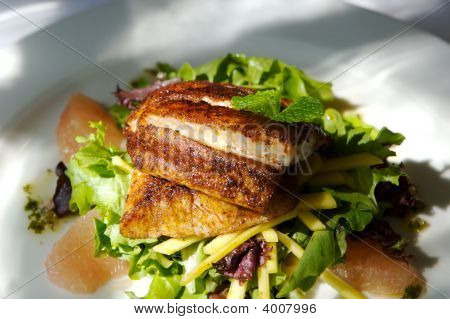 Gourmet Fish And Citrus Salad