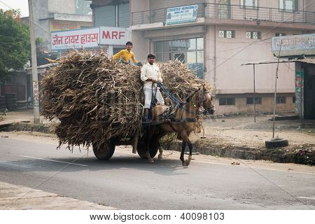 Two Indian Boys Ride A Horse With Loaded Cart On A Road