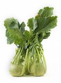 Fresh Bunch Of Organic Kohlrabi Vegetable On White Background Also Scientifically Known As Brassica poster