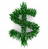 stock photo of save money  - A Dollar Sign composed of grass blades symbolizing the saving of money by being Earth friendly - JPG