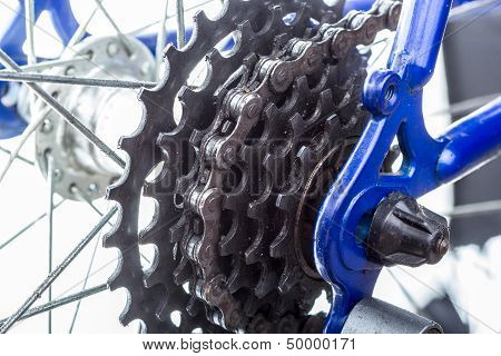 Bicycle Rear Sprockets Close-up.