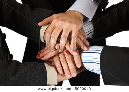 Hands Of Business People Showing Unity