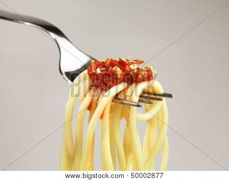Fresh Spaghetti Pasta