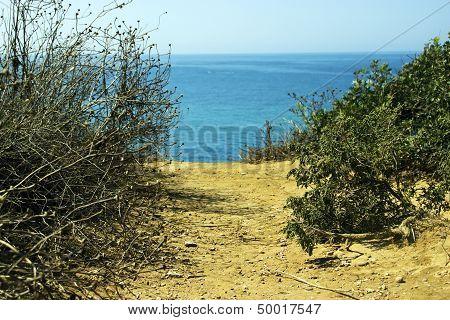 View Of Ocean In Conil