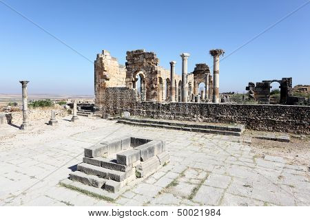 Roman Temple Ruin In Morocco