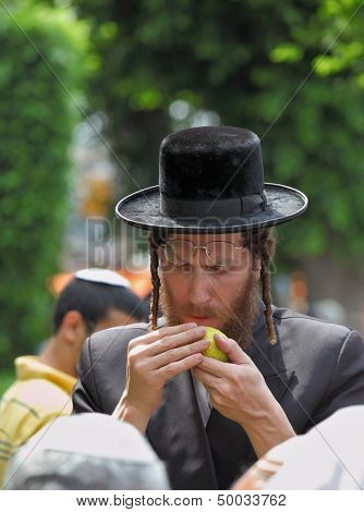 BNEI-BRAK, ISRAEL - SEPTEMBER 22: An orthodox Jew in long sidelocks and black hat picks citrus before the holiday of Sukkot September 22, 2010 in Bnei Brak, Israel