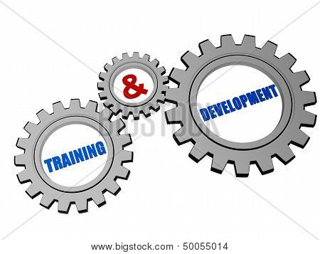 Training & Development In Silver Grey Gears