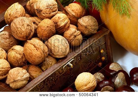 Chest with walnuts against white background
