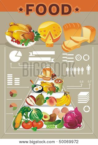 Food Info graphic Elements. Elegance Ingredients Vintage Retro
