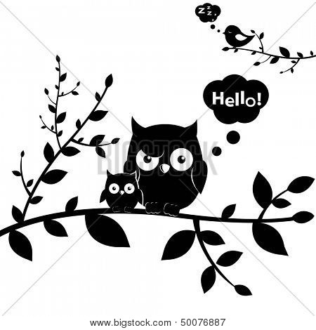2 Owls, Isolated On White Background, Vector Illustration