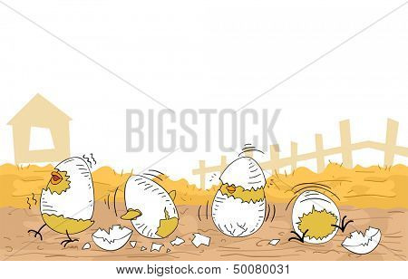 Illustration of Cute Chicken Hatchlings Still Partially Covered by Cracked Egg Shells