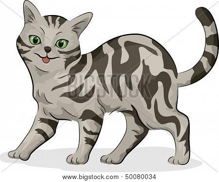 Illustration of a Cute Gray American Shorthair Cat