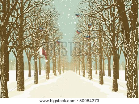 Prospect of the alley in a park with various trees on either side and flock of bullfinches