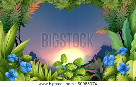Illustration of an early morning view at the forest